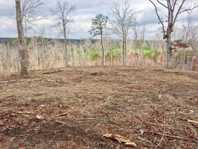 About Clean Acres Land Management Dallas, Hiram & Acworth Georgia